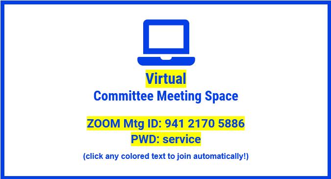 Web Committee Meeting @ Virtual Committee Space (ZOOM Meeting)